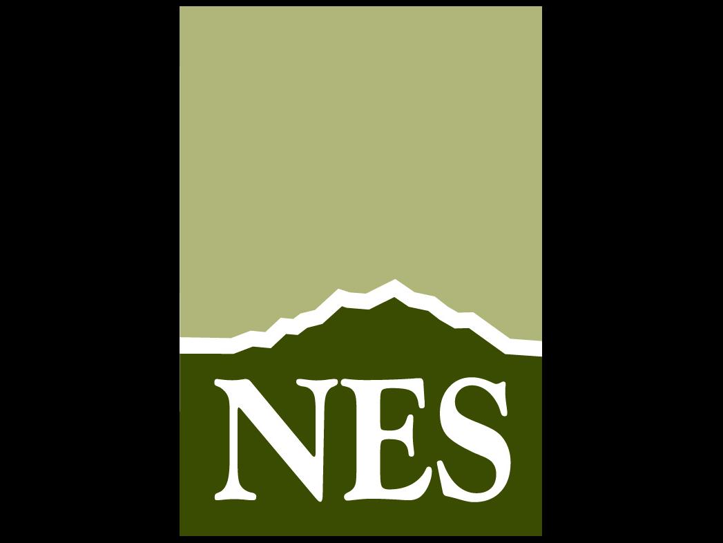 N.E.S. Inc.