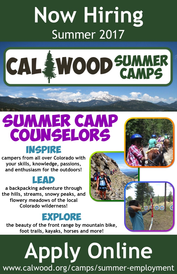 Cosa Hiring Summer Camp Counselors Cal Wood Education